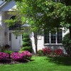 Sacramento Landscaping: Recommended Evergreen Shrubs & Trees