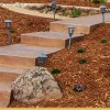 Stamped Concrete Walkways Roseville