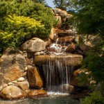 landscaping ideas Sacramento