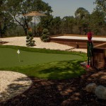 backyard putting green par aide