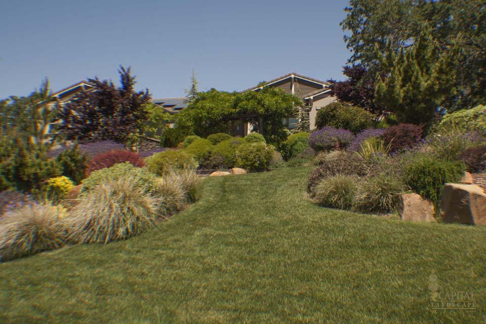 Beginning to bloom remodel or repair sacramento landscape for Landscaping rocks sacramento