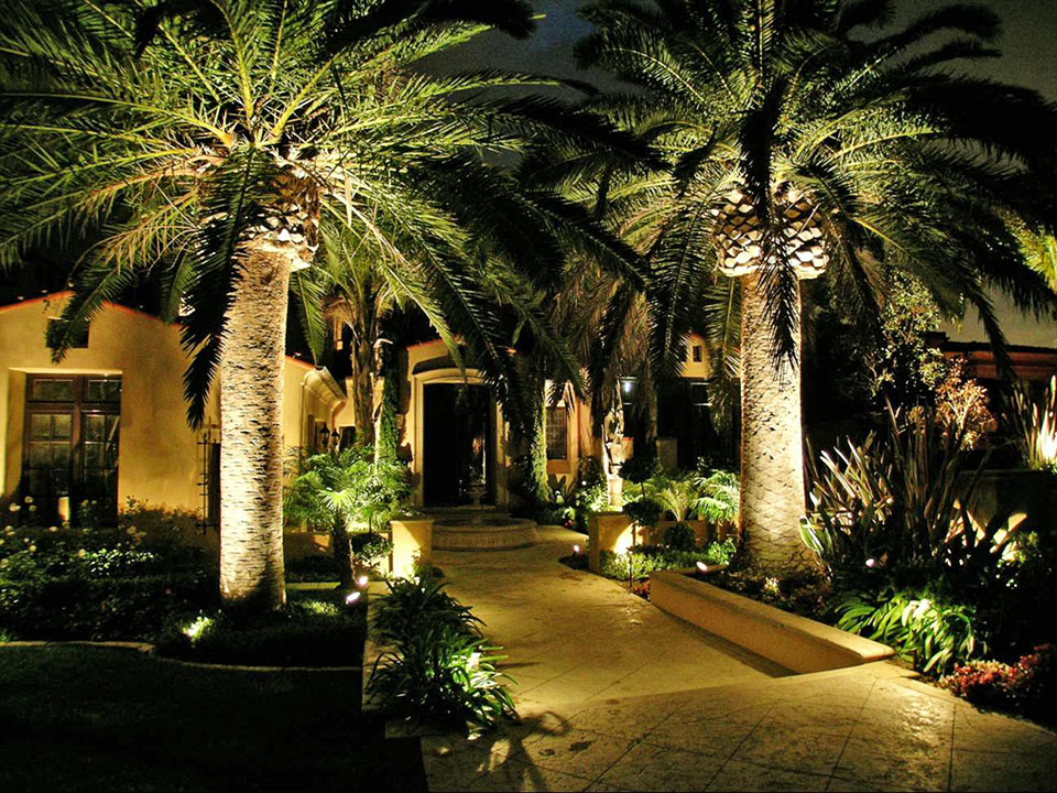 Solar String Lights For Palm Trees : Pin Landscape Lighting Palm Trees Line Voltage on Pinterest