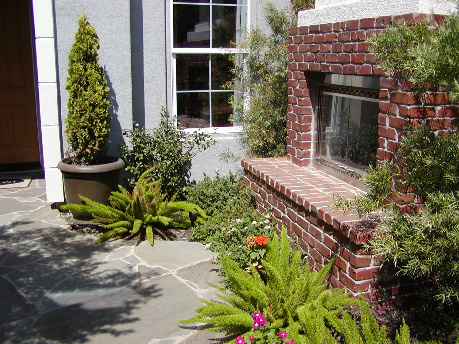 Why go drought tolerant sacramento landscape for Landscaping rocks sacramento