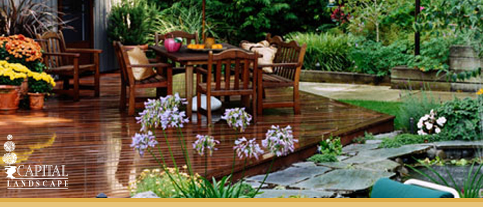 Landscape Design and Install in Roseville