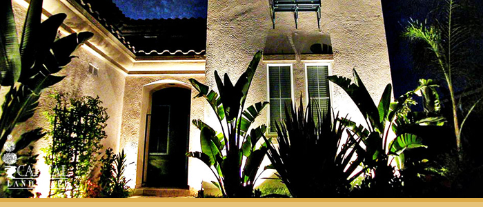 Landscape Lighting Design Sacramento