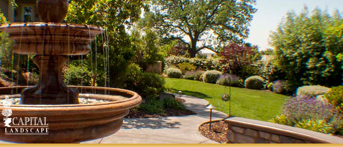 Custom Landscape Design Solutions