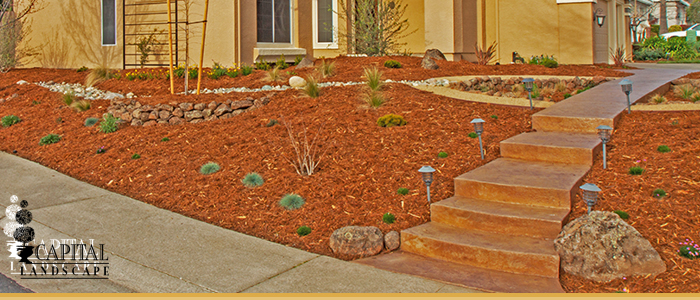 Drought tolerant landscape design sacramento for Landscaping rocks sacramento