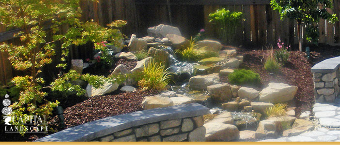 Landscape Design Water Features in Citrus Heights