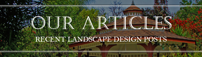 Recent Landscape Design Posts