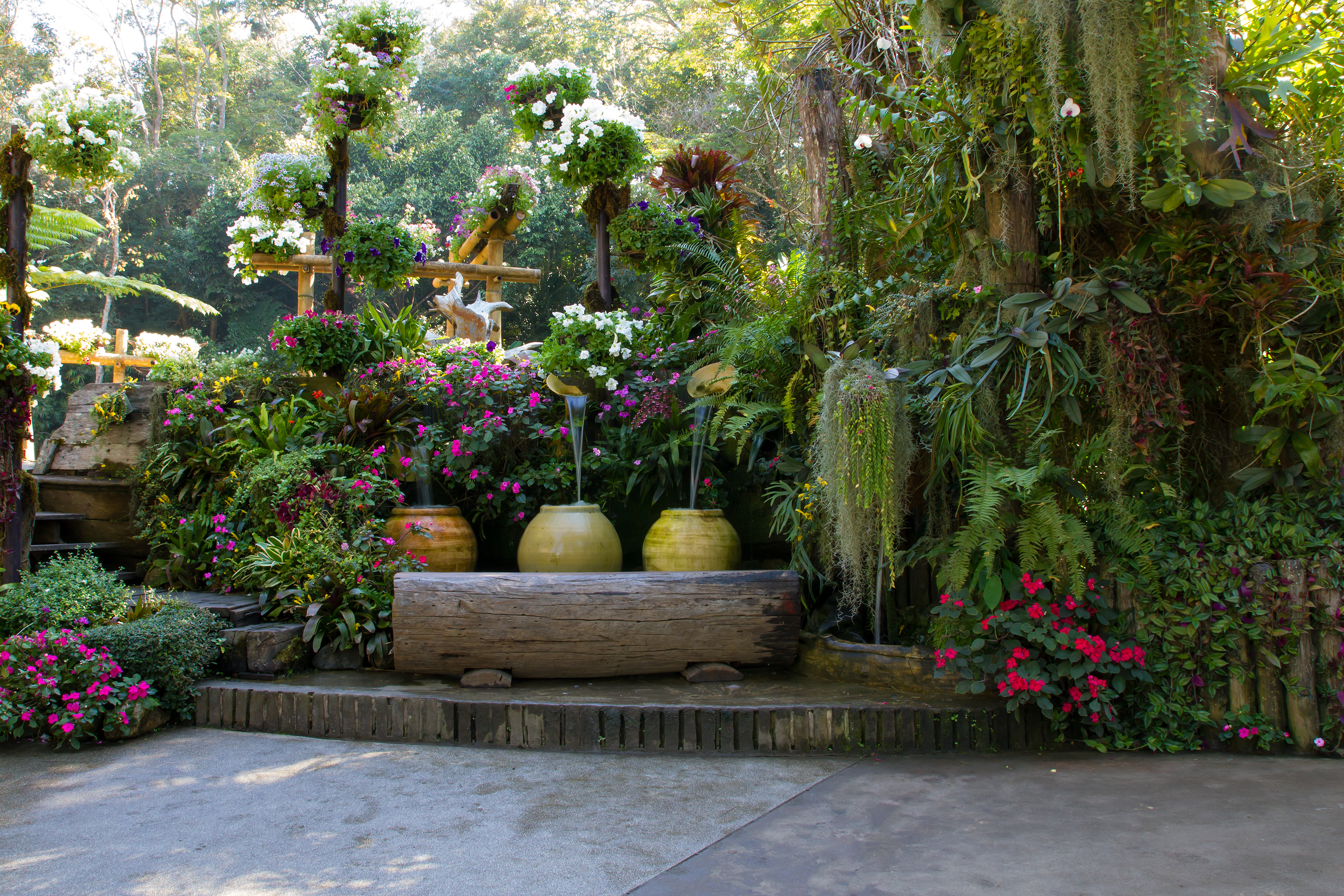 How to care for Flowers - Sacramento Landscape on Stunning Backyards  id=80579
