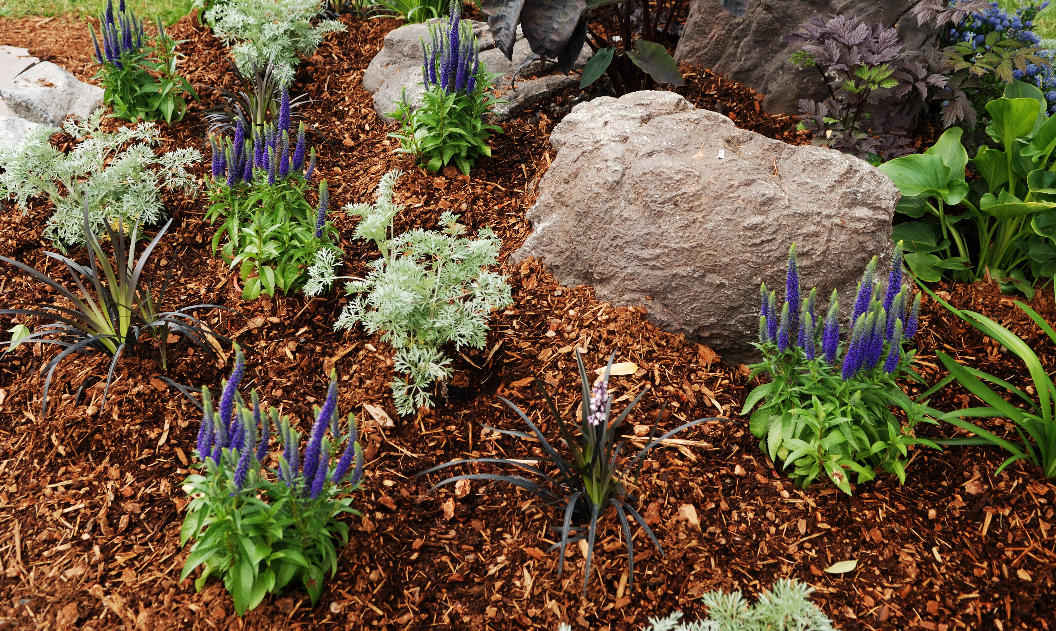 The Pros And Cons Of Different Types Of Mulch Sacramento Landscape